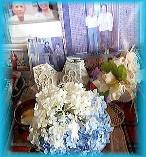 300父母へ紫陽花を.jpg