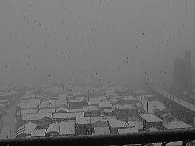 400吹雪いてる.jpg