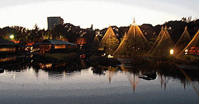400夕暮れの白鳥庭園.jpg