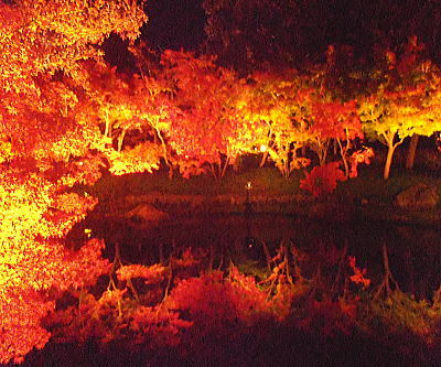 400夜の鏡池.jpg
