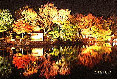 400白鳥庭園15.jpg