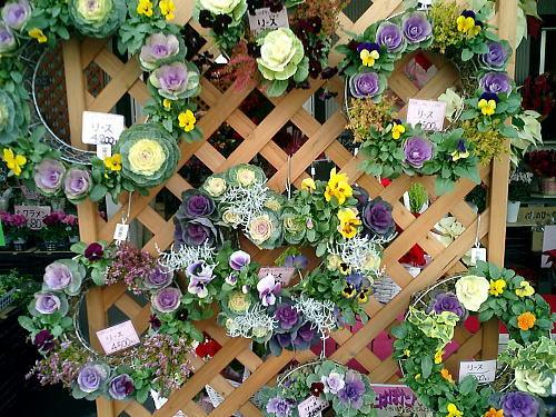 500花市場リース.jpg