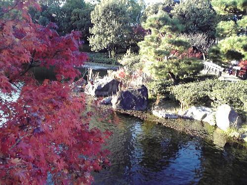 500くすのき橋.jpg