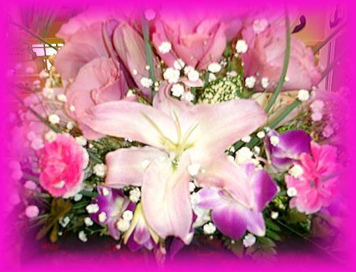 500花.jpg